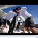 Press Release – FROM RORC – VIDEO Early finishers in the RORC Caribbean 600